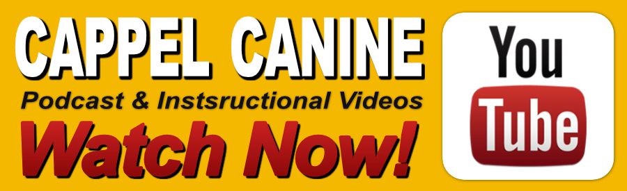 Cappel Canine YouTube Obedience and Protection Training